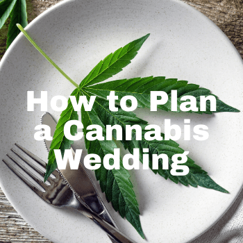 How to Plan a Green Wedding